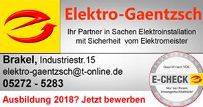 Elektro-Gaentzsch